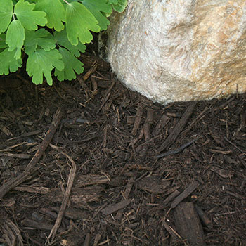 Coarse Mulch
